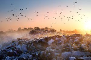 Landfill Methane Capture